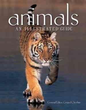 "Animals"""