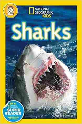 "Sharks!"""