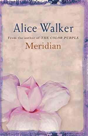 Buy Meridian by Alice Walker online in india - Bookchor | 9780753819494