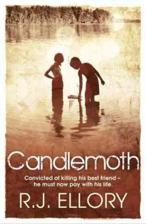 """Candlemoth"""""""