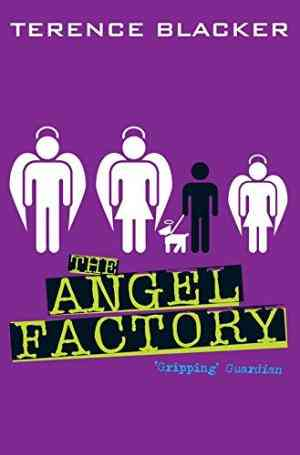 Buy The Angel Factory by Terence Blacker online in india - Bookchor   9780330480246