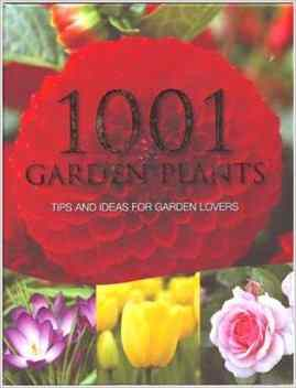 Buy 1001 Most Popular Garden Plants by Hannah Montana online in india - Bookchor   9781445408743
