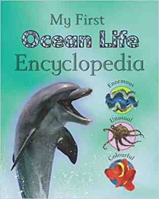 Buy Reference 5+: Childrens Ocean Life Encyclopedia by Hannah Montana online in india - Bookchor   9781407512679