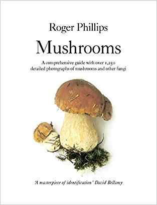 Buy Mushrooms by Roger Phillips online in india - Bookchor | 9780330442374