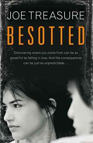 Buy Besotted by Joe Treasure online in india - Bookchor   9780330448987