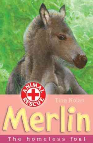 Buy Merlin by Tina Nolan online in india - Bookchor | 9781847150165