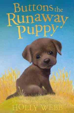 Buy Buttons the Runaway Puppy by Holly Webb online in india - Bookchor | 9781847150875