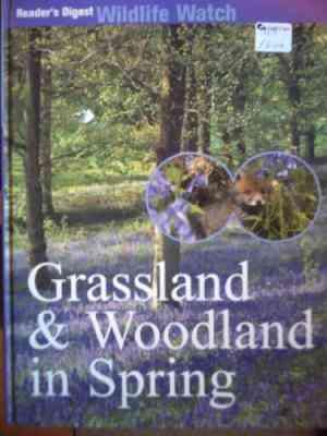 Grassland-&-Woodland-in-Spring