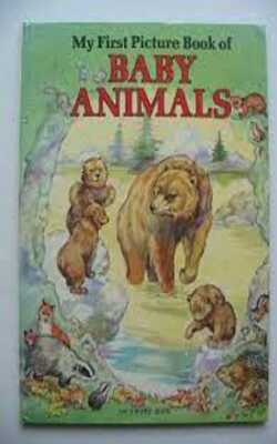 Baby-Animals--My-first-picture-book