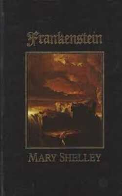 Buy Frankenstein by Mary Shelley online in india - Bookchor | 9780863076824