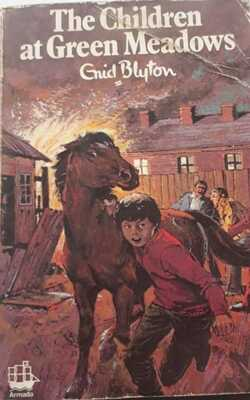 The-Children-at-Green-Meadows-By-Enid-Blyton-Paperback
