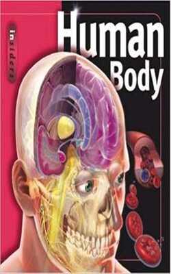 Insiders---Human-Body