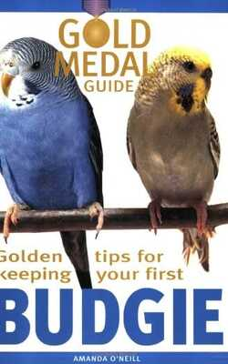 Budgie-(Gold-Medal-Guide)