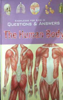 The-Human-Body